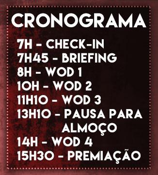 cronograma-site